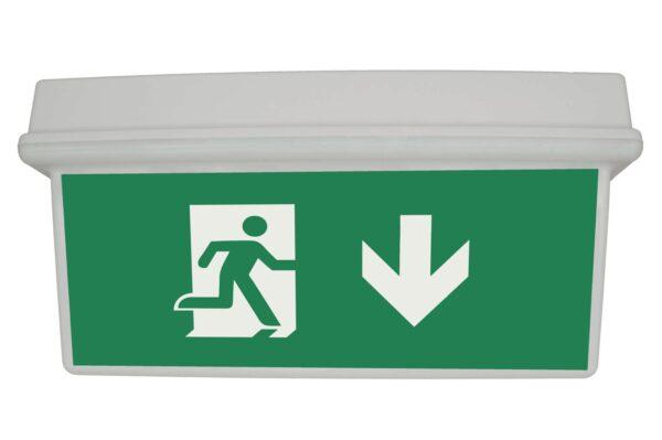 senso exit 0306 notausgangsbeleuchtung led ip65 piktogramm runter